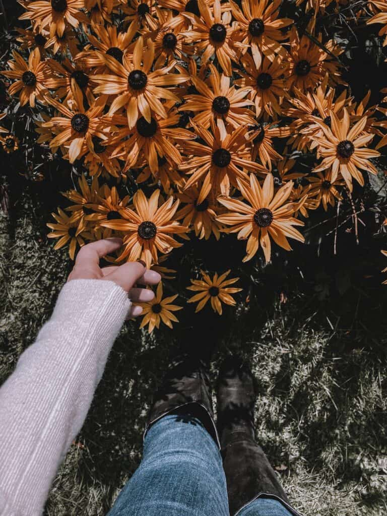 faceless person touching flowers in garden