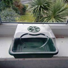 Windowsill Mini Greenhouse for Plug Plants